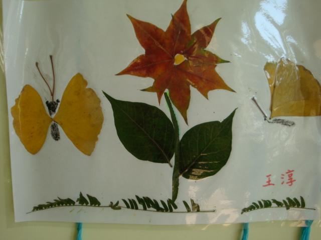 美丽的树叶粘贴画