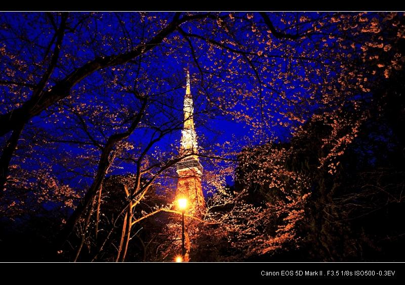 东京塔上观夜景-暴风雨来了1999-搜狐博客