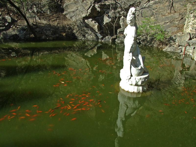 二处灵光寺的佛牙舍利塔沐浴在春日的阳光下
