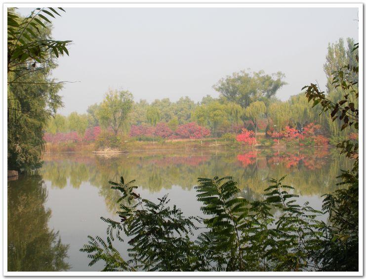 翠湖湿地公园