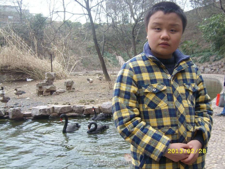 )——红山森林动物园