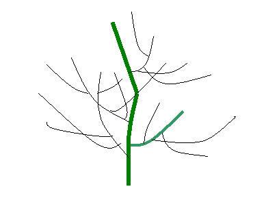 某些树种可以赋予特殊品格:松树的高贵,柳树的婀娜,胡杨的荒凉萧条等