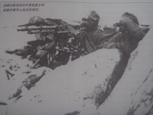 戴雪绒花的男人----二战德军山地猎兵部队(转载)