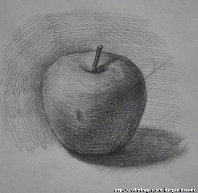 画苹果素描 怎么画好苹果素描图片 又简单的苹果而是素描的树怎么画图片