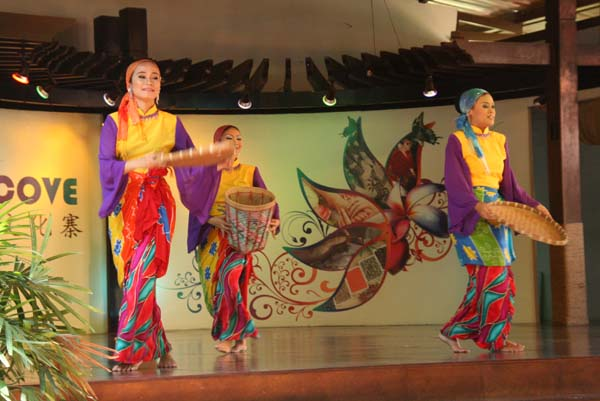 """《2010春天在哪里""""第十八乐章""""——雪兰莪民族文化寨——菠萝不是菠萝"""