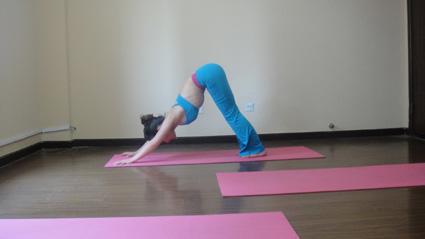 瑜伽排课体式串联的书