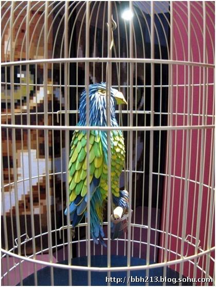 壁纸 动物 鸟 鸟类 雀 鹦鹉 420_558 竖版 竖屏 手机