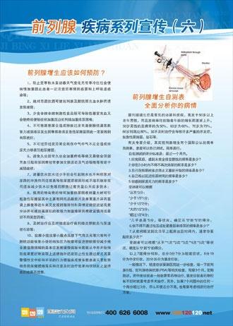 医院宣传标语|医院男科标语|男性前列腺结构图