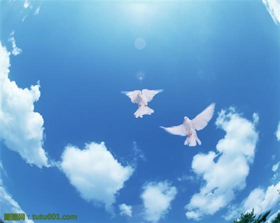 背景 壁纸 风景 天空 桌面 560_446